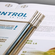 Bayer autocontrol diabetes